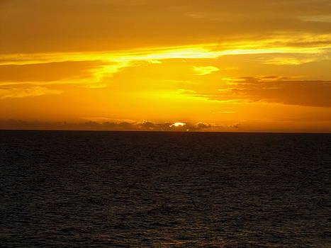 Gulfside Sunset by Julie Pappas