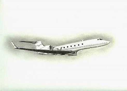 Gulfstream Jet by Wanda Edwards