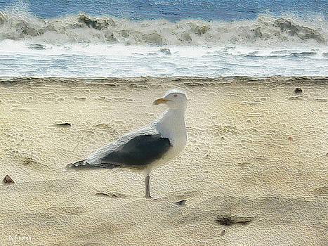 Dee Flouton - Gull
