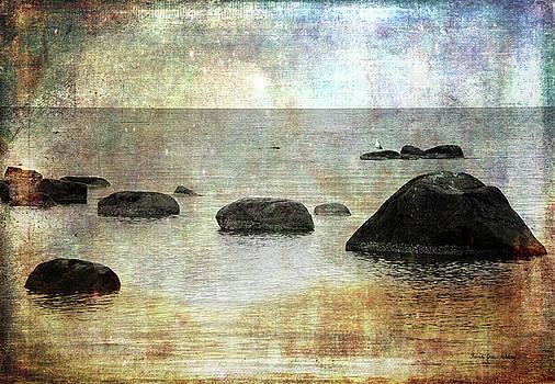 Gull in Paradise by Randi Grace Nilsberg