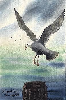 Gull Landing by Robbie L Rogers