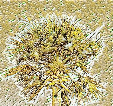 Gullah Palm by Sherry Kuhlkin