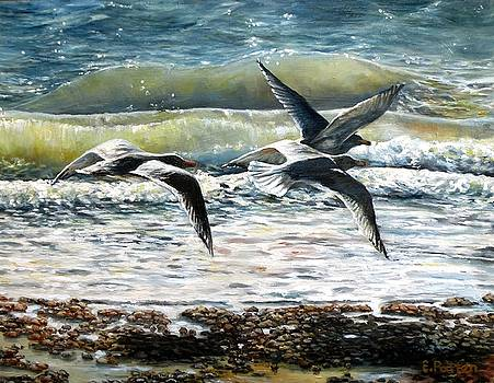 Gulls At Pebble Beach, Rockport, MA by Eileen Patten Oliver