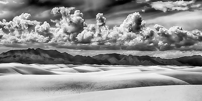 Guy Shultz - Gypsum Footprints BW