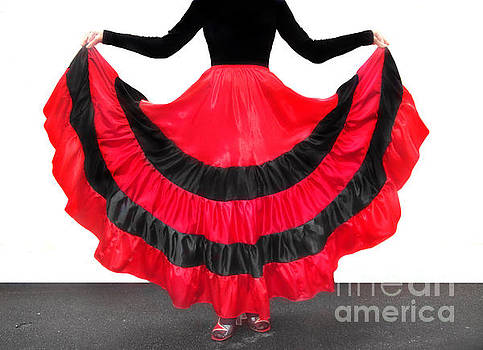 Sofia Metal Queen - Gypsy dance skirt, red-black. Ameynra design