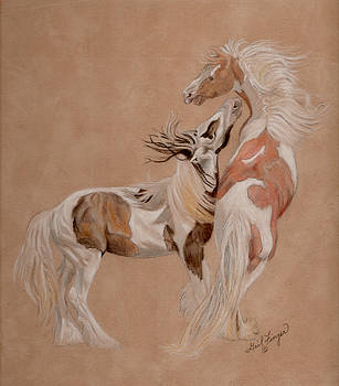 Gypsy Horses at Play by Gail Finger