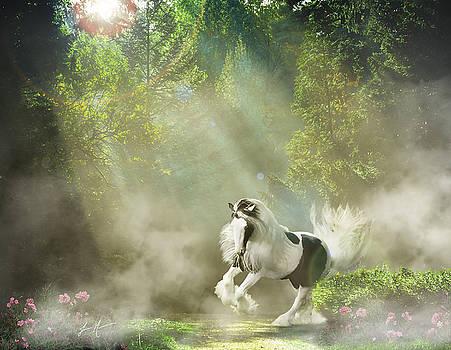 Gypsy in the Mist by Jamie Mammano