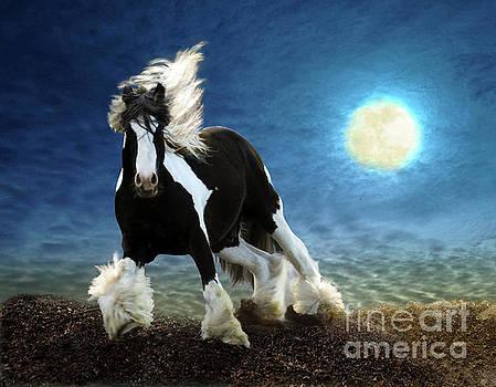 Gypsy Moon by Melinda Hughes-Berland