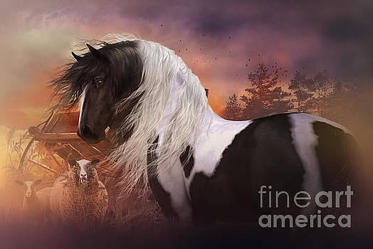 Gypsy on the Farm by Shanina Conway