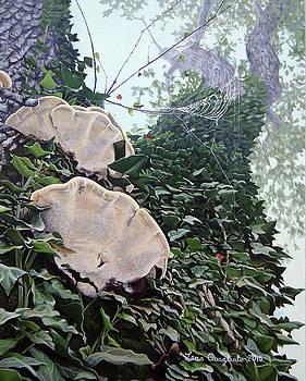 Habitat by Lena Quagliato