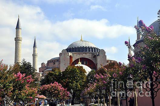 Andrew Dinh - Hagia Sophia Close Up