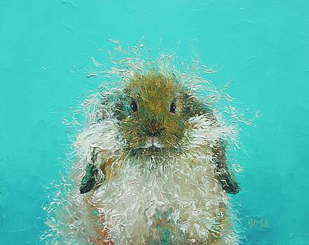Jan Matson - Hairy Rabbit