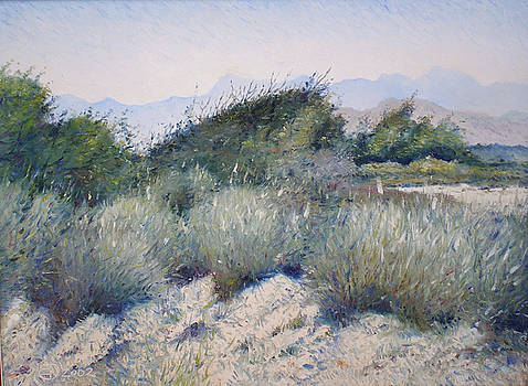 Hajar mountains Oman 2002 by Enver Larney