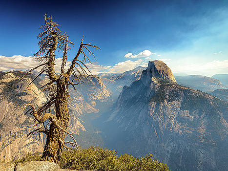 Half dome from Glacier point by Davorin Mance