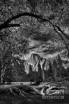 Half Dome from the Valley by Nick Carlson
