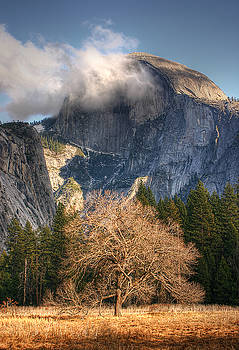 Half Dome Undercover by Tracy Thomas