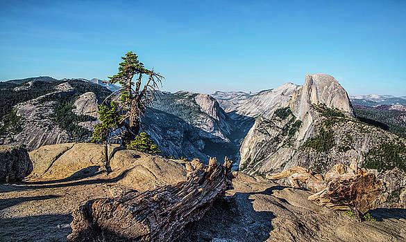 Half Dome - Yosemite National Park by Tony Fuentes