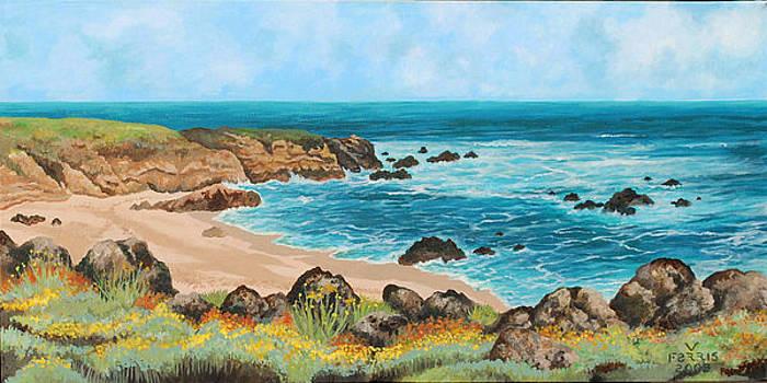 Half Moon Bay by Vernon Farris