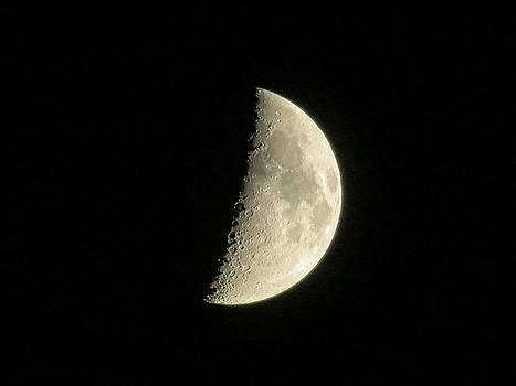 Kyle West - Half Moon