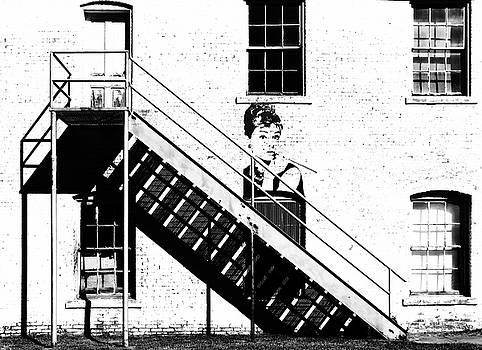 Half Way Up by Christopher McKenzie
