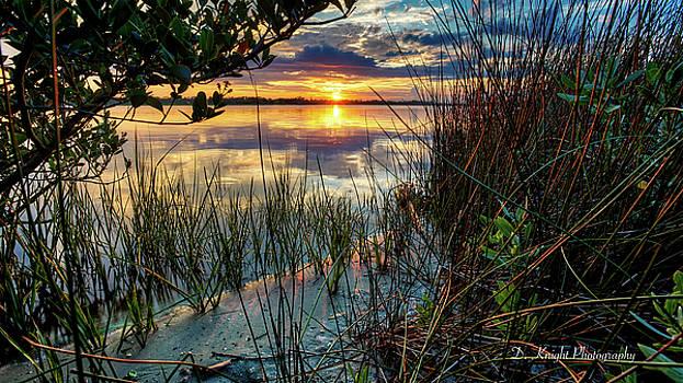 Halifax Sunset  by Dillon Kalkhurst