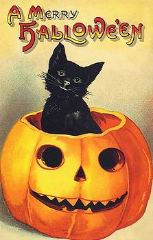 Halloween Black Cat by Vintage Art