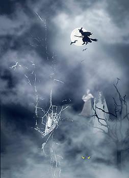 Halloween Night by Diane Schuster