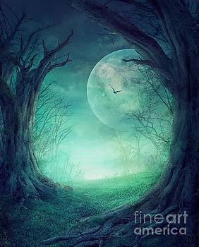 Mythja  Photography - Halloween Spooky Forest