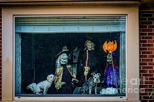 Doug Berry - Halloween to You 6405T