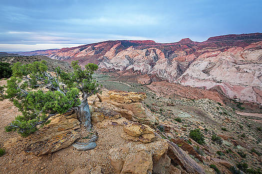 Halls Creek Overlook by Whit Richardson