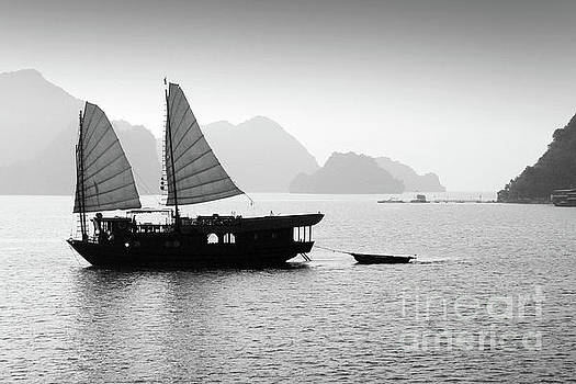 Halong bay black and white by Delphimages Photo Creations