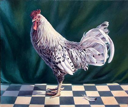 Hamburger Rooster by Hans Droog