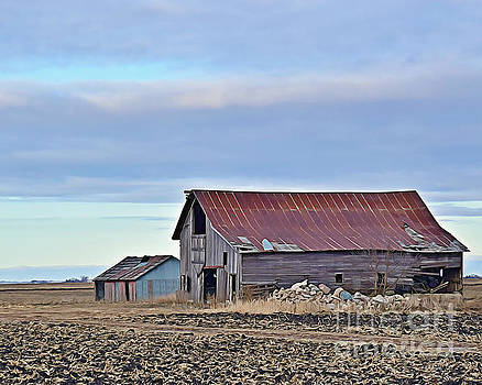 Hamilton County Barn And Shed by Kathy M Krause