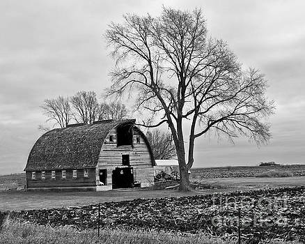 Hamilton County Barn-BW by Kathy M Krause