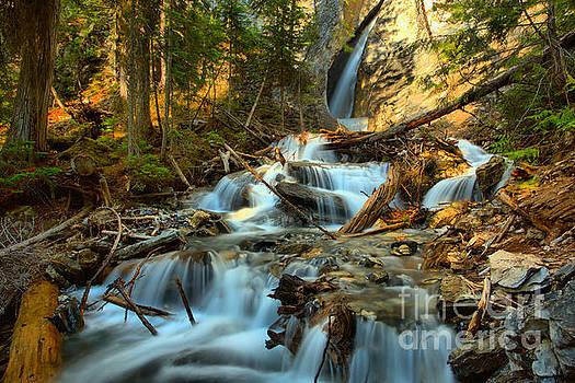Adam Jewell - Hamilton Falls Landscape