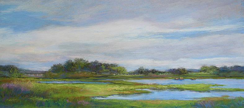 Hammonassett Sky by Vikki Bouffard