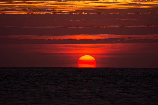 Hampton Roads Sunrise by Steve Hammer