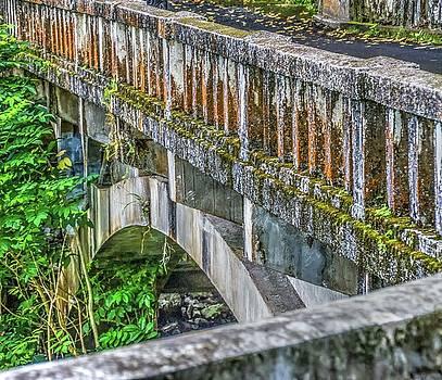 Hana Highway Bridge by Nadine Berg