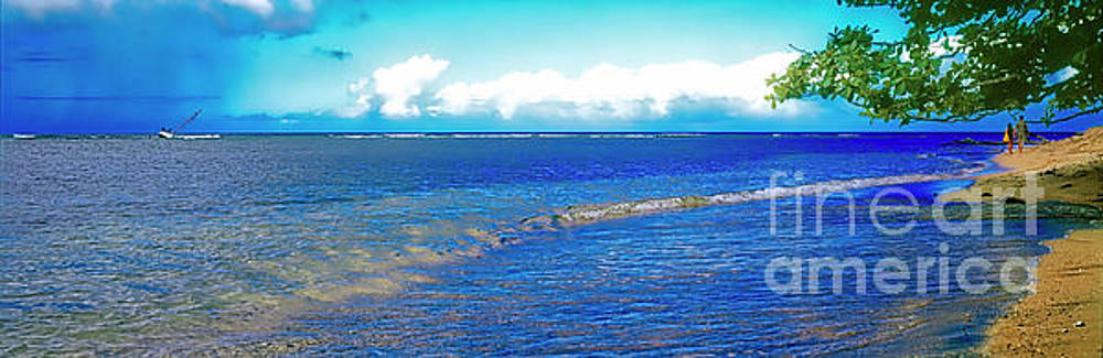 Hanalei bay kauai hawaii  by Tom Jelen
