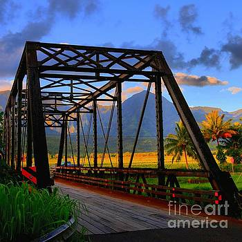 Hanalei Bridge by DJ Florek