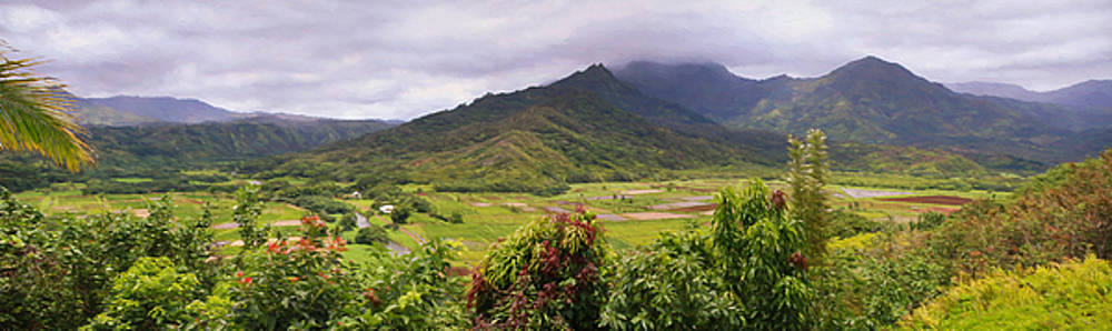 Hanalei Valley Panorama by Bonnie Follett