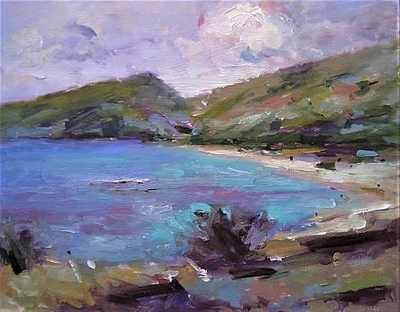 Hanauma Bay sketch by R W Goetting