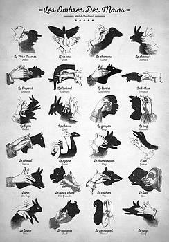 Hand Shadows by Taylan Apukovska