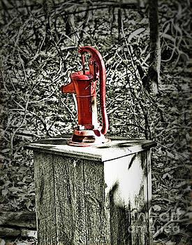 Hand Water Well Pump by Smilin Eyes  Treasures
