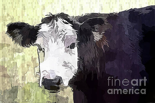 Handsome Heifer by Eleanor Abramson