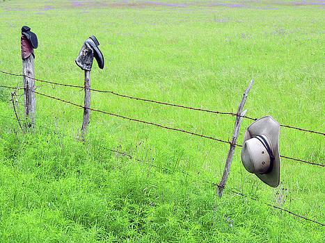 Hang Your Hat by Krin Van Tatenhove
