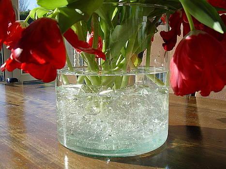 Hangende Tulpen by Ton Bocxe