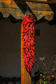 Hanging Chilli Peppers by Garry Gay