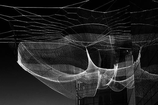 Hanging by David Lunde