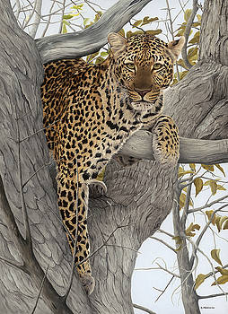 Hanging Out by Clive Meredith
